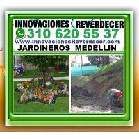? JARDINEROS MEDELLIN, Vivero, Paisajismo, Diseño Jardines, Jardineria, Silletas, Poda, Podador, Sis