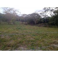 Lote 4496 mts2, sobre la carretera a dos kilómetros del pueblo de San Luis Tolima